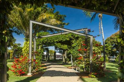 View along an arbour walkway covered in vines in bloom