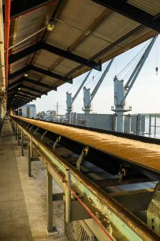 Conveyor belt transporting raw sugar along the wharf at the Cairns Sugar Terminal