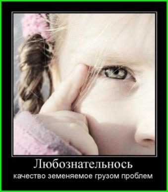 Любознательность детей