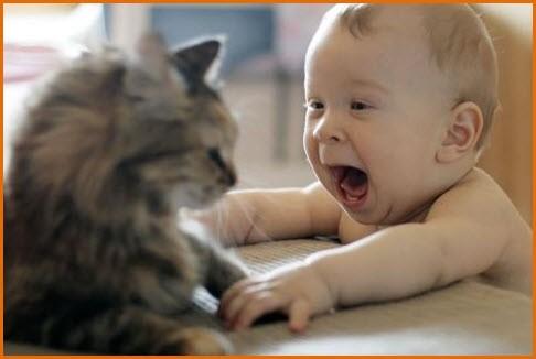 Детский восторг The joy of children