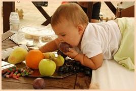 Детёнок лопает сливу