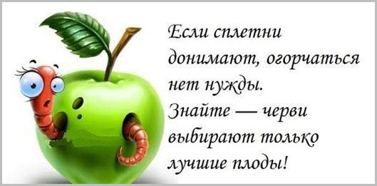 https://i0.wp.com/andrey-eltsov.ru/wp-content/uploads/2017/01/HorNastr10.jpg?w=529