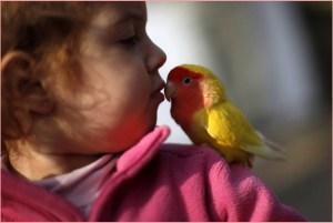Девочка и маленький попугай