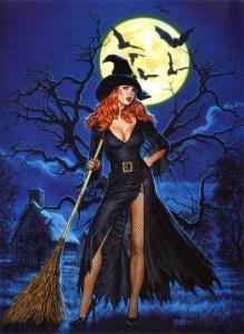 Сексуальная ведьма с метлой