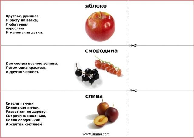 Загадка яблоко
