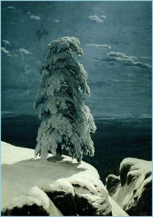 Северный лес фото