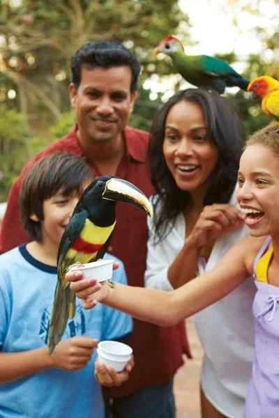 DC+Avairy_Hisp_Family_With_Birds_2.jpg