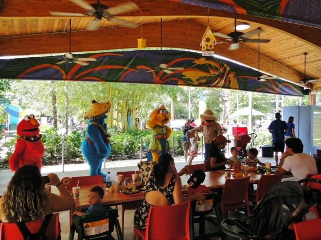 Foto by Andreza Trivillin - Sesame Street Safari Fun - Busch Gardens