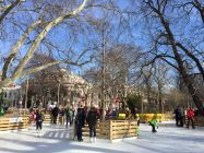 ice-skating-area-in-vienna