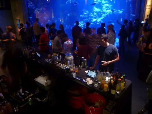 Eine der Bars - hier beim Aquarium.