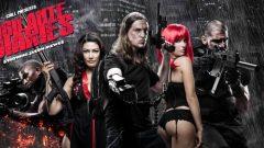 Vigilante Diaries (2016) online besplatno sa prevodom u HDu!