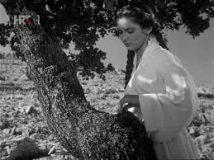 Djevojka i hrast (1955) domaći film gledaj online