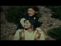 Izvor (1978) domaći film gledaj online
