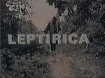 Leptirica (1973) domaći film gledaj online