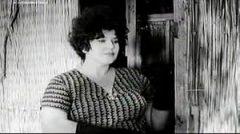 Leto je krivo za sve (1961) domaći film gledaj online