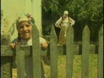 Mujo gleda lijepu Nizamu (2007) domaći film gledaj online