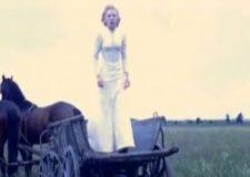 Pukovnikovica (1972) domaći film gledaj online