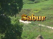 Sabur - Mujo gleda lijepu Nizamu (2007) domaći film gledaj online