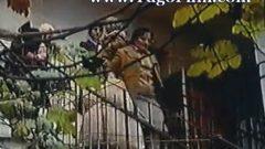 Tamo i natrag (1978) domaći film gledaj online