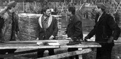 Uzavreli grad (1961) domaći film gledaj online