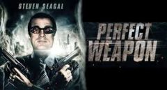 The Perfect Weapon (2016) online sa prevodom