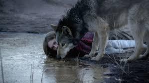 Wild (2016) online sa prevodom