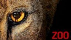 """Online epizode serije """"Zoo"""""""
