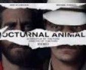 Nocturnal Animals (2016) online sa prevodom