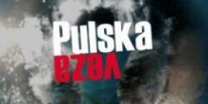 Pulska veza (2012) domaći film gledaj online