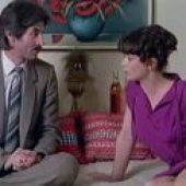 Rad na odredjeno vreme (1980) domaći film gledaj online