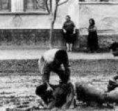 Rani radovi (1969) domaći film gledaj online