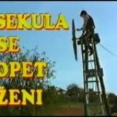 Sekula se opet zeni (1991) domaći film gledaj online