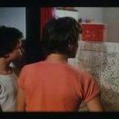 Ucna leta izumitelja Polza (1982) domaći film gledaj online