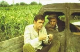 Usijanje (1979) domaći film gledaj online