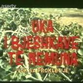 Vuk sa Prokletija (1968) - Uka i Bjeshkëve të nemura (1968) - Domaći film gledaj online