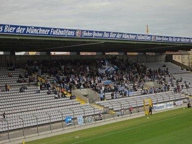 Fans der Löwen