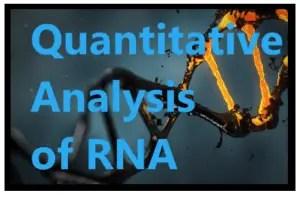 analysis of rna
