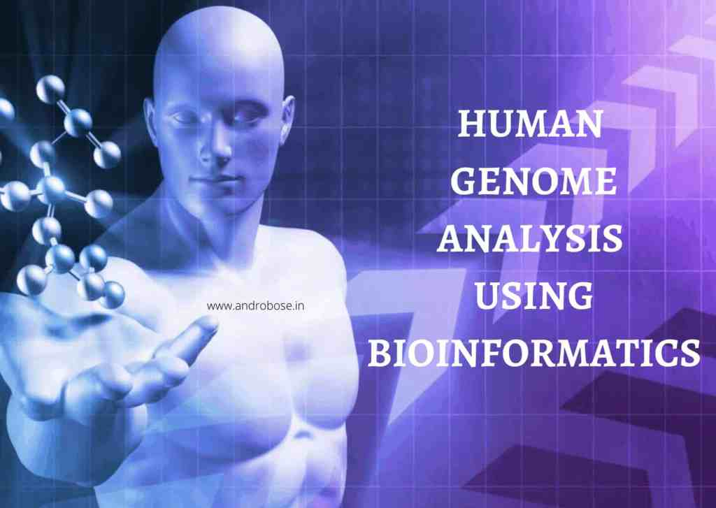 HUMAN GENOME ANALYSIS USING BIOINFORMATICS