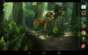 Forest HD Screen