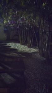 G2 - Jardin - Nuit