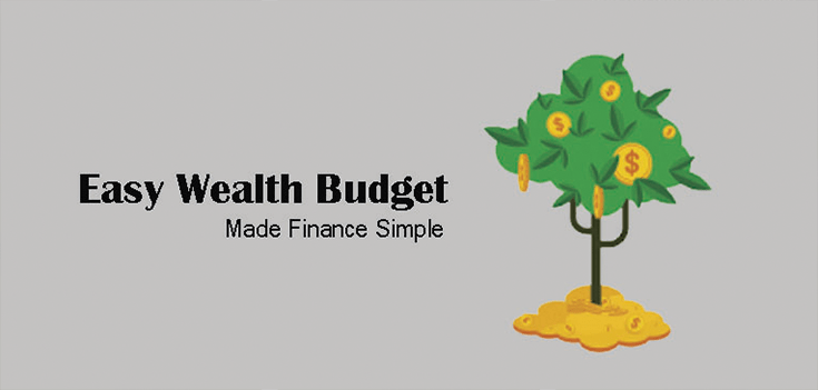 Easy Wealth Budget Android App Finance Made Simple