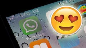 Send Message Whatsapp