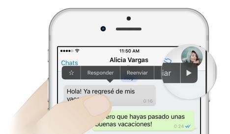 WhatsApp Android Beta