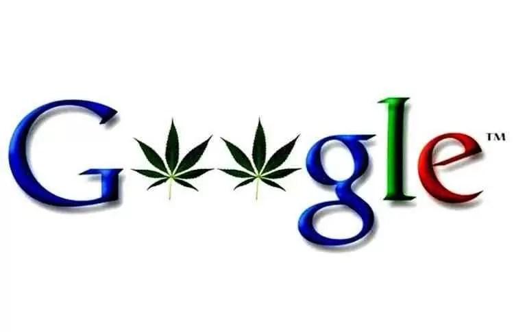 Pesquisar por 420 no Google Fotos mostra as ganzas que fotografaram 1
