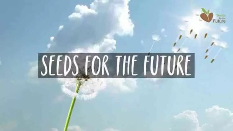 Huawei aposta na terceira edição do Programa Seeds for the Future em Portugal 1