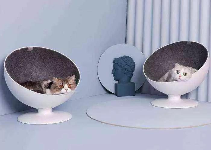 Xiaomi, cama de gato