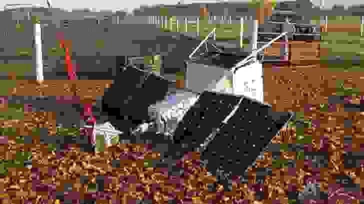 Lembram-se da Spaceselfie da Samsung? O satélite caiu num quintal! 1
