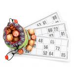 Lotto 2.02 APK MOD Unlimited Money
