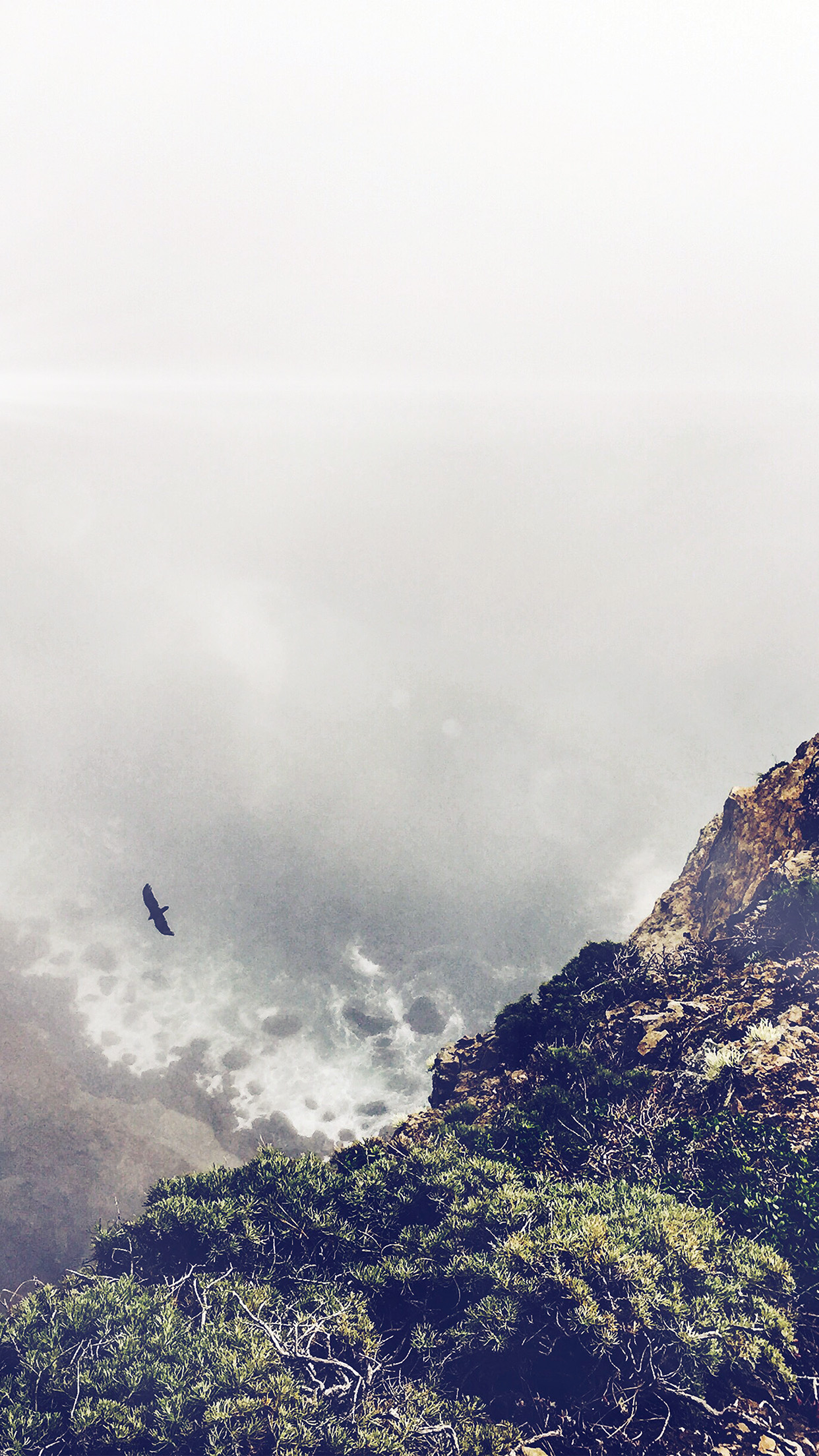 Wallpaper Images With Quotes Mountain Bird Cliff Animal Fog Cloud Flare Android