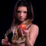 Googles Künstliche Intelligenz lernt von erotischer Literatur